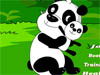 Funny and Happy Panda