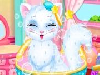 CutestKitty Beauty Contest is taking place in your town! Why don't you join the contest with your cute cat? You can give it a makeover here, in this salon! You can trim its fur, dress it up as you like and more! Do your best to make your cat look cuter!