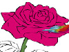 Are you ready to beautify these pretty flowers even more, adding them the colors that will liven them up in an instant? Pick the type of flower that you'd like working your skills as a fine artist on first: a gorgeous rose or maybe some lovely poppies! Next, just dip your feather into the differently colored paints you have there, in the bottom and on the left side of your screen, and get your flowers colored up! It's up to you which one of them will have... candy pink, cherry red or golden yellow petals. Next, get their little stems and leaves painted, as well, opting either for the standard brown and green or... getting daring and expressing your full creativity as a little fine artist opting for... blue leaves (why not?) and maybe for a purple stem instead!
