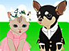 Igraj Pet wedding